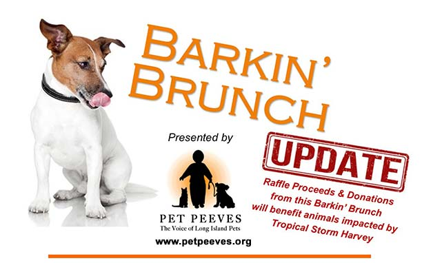 barking Brunch