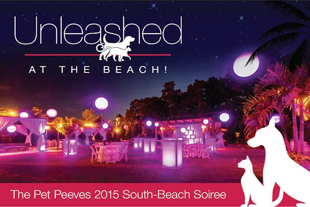 unleashed-at-the-beach